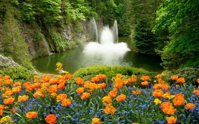 3d Wallpaper Widescreen Waterfalls Hd Pictures 4hd Wallpapers